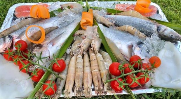 Fish and Seafood in Side