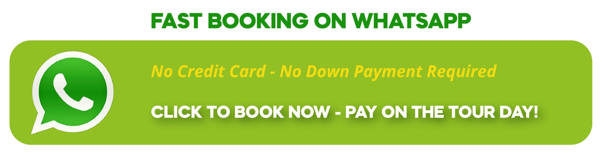 Fast booking via whatsapp on ExcursionSide